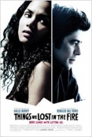 things we lost in the fire - susanne bier