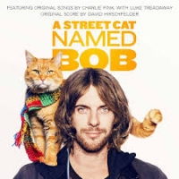 a street cat named bob - roger spottiswoode